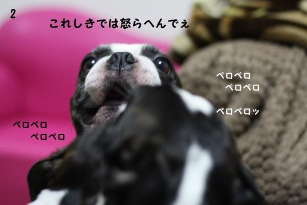 IMG_5493.JPG
