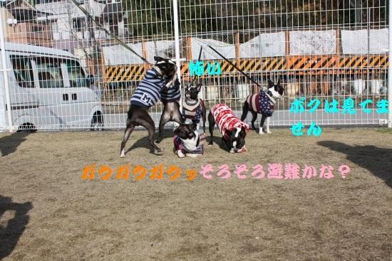 IMG_89630.JPG